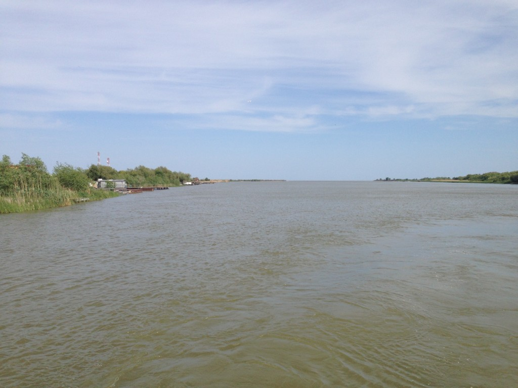 Danube Delta at his estuary mouth into Black Sea