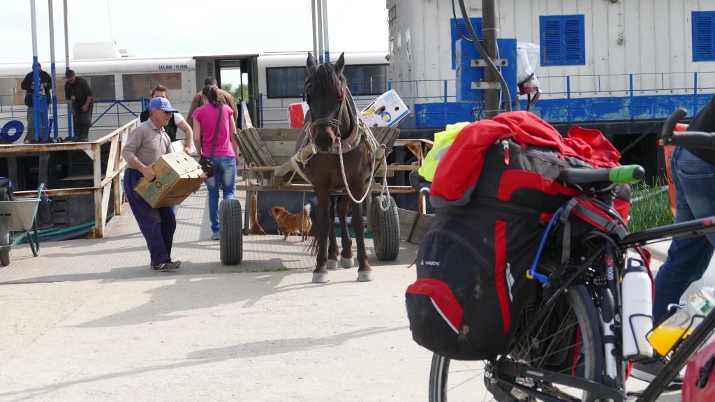 Going ashore in Sfantu Gheorghe