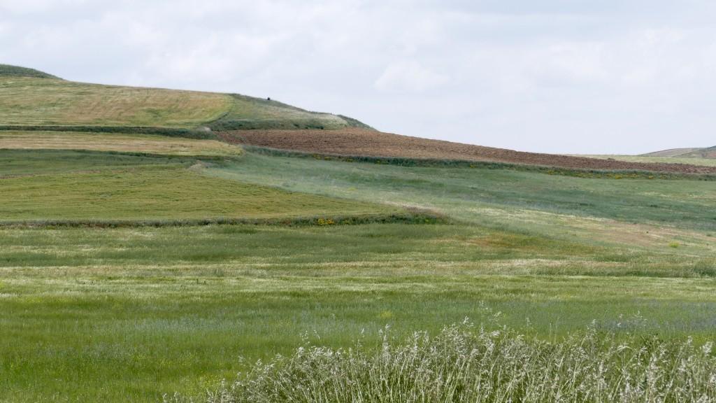 Anatolia fields short of Eskisehir