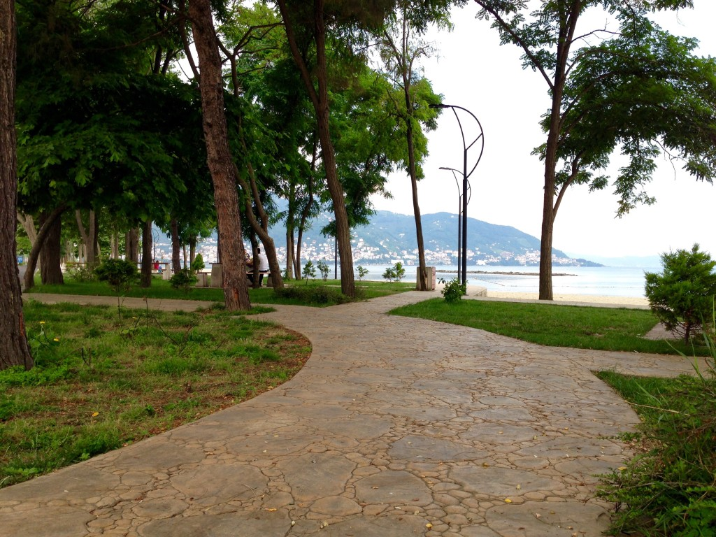 Urban development (one of hundreds o Parks) in Ordu