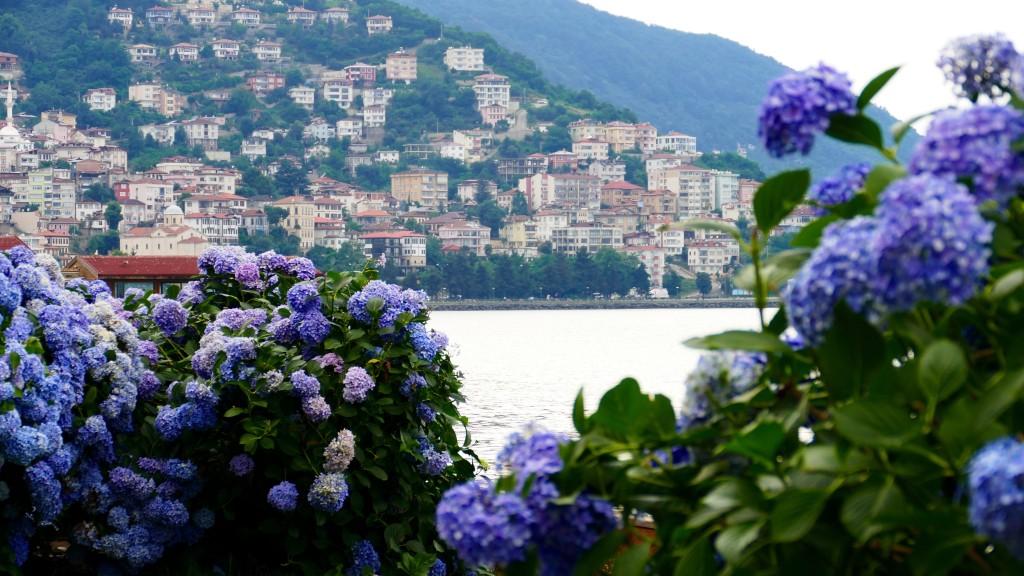 Ordu, the 200.000 people city on the Black Sea coast.