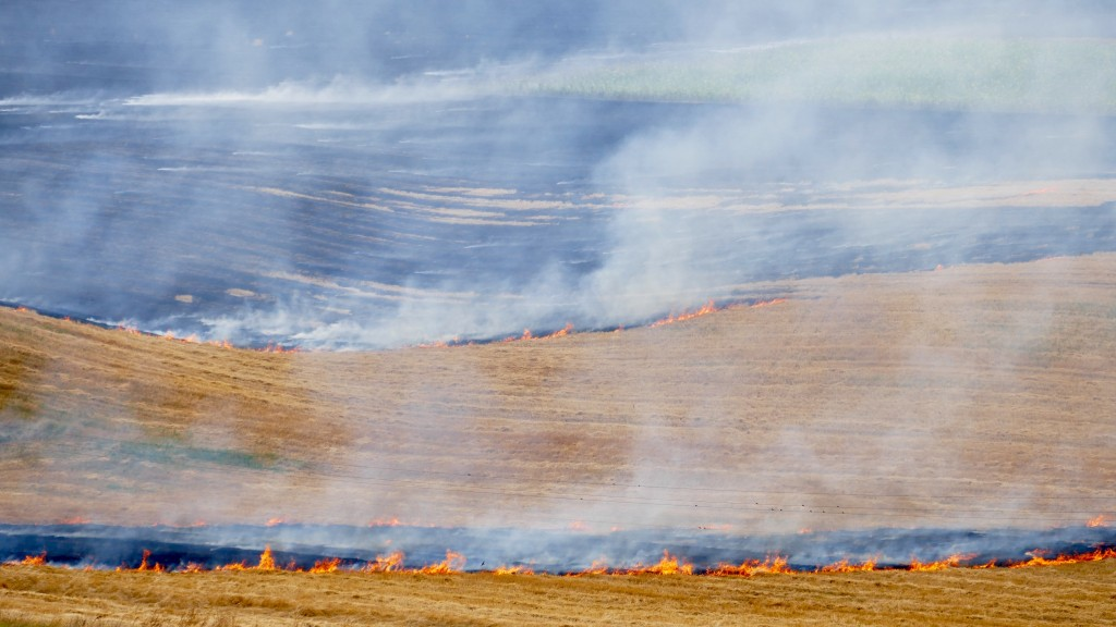 The burning of stubble, contrasted with alternatives such as ploughing the stubble back into the ground has a number of consequences and effects on the environment. In USA and Europe is forbidden mainly due to the negative consequences of this method.