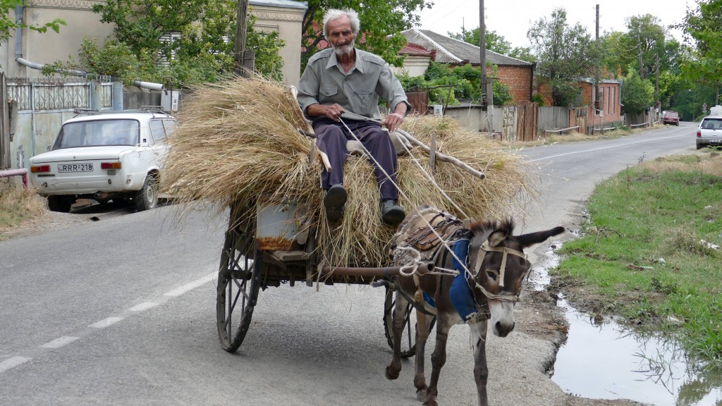 A Georgian Farmer on his way home. Kakheti region.