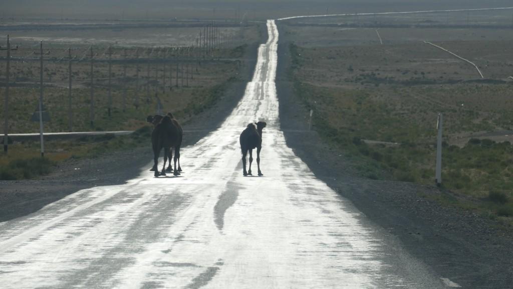 Mangghystau Region, Kazakhstan